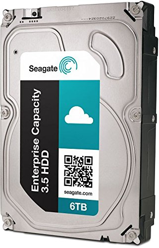 Seagate Enterprise Capacity 3.5 HDD 6TB 7200RPM 12Gb/s SAS 128 MB CacheInternal Bare Drive ST6000NM0034