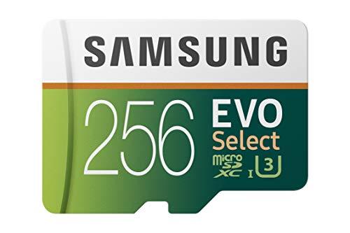 Top 10 SD Card 256GB – Micro SD Memory Cards